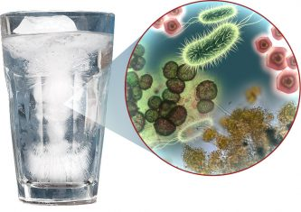 germs in water glass