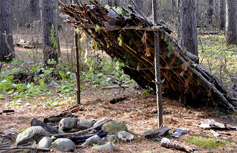 how to build a shelter with natural resources