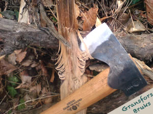 axe cutting tree branch