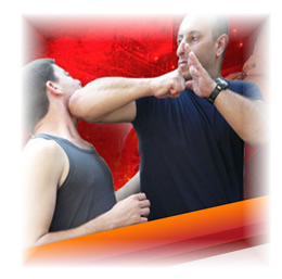 defence training krav maga