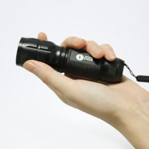 Lighting EVER CREE LED Torch in hand