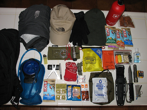How To Survive In The Wild Uk Preppers Guide